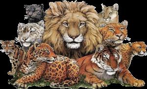animaux-savane.png